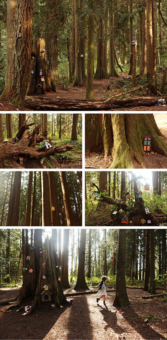 redwood-forest-fairy-doors-surrey